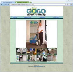 Gogo Carpet Cleaning
