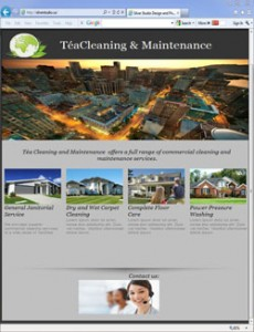 Tea Cleaning and Maintenance